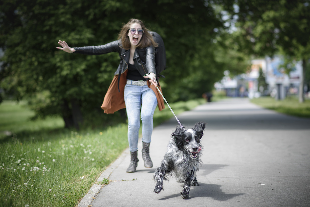 一人暮らし女性の犬の散歩