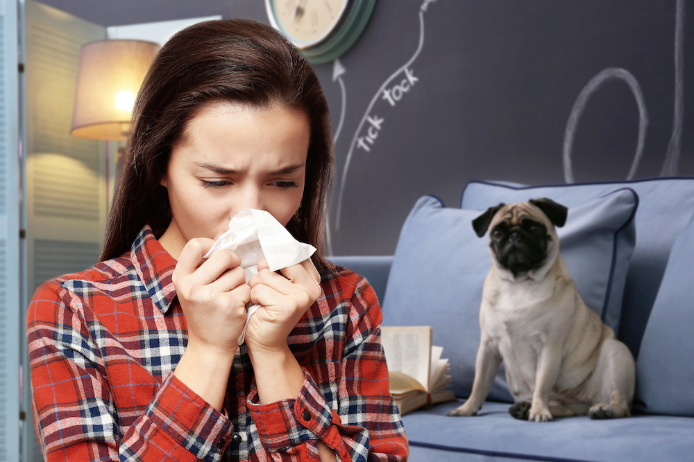 犬アレルギー