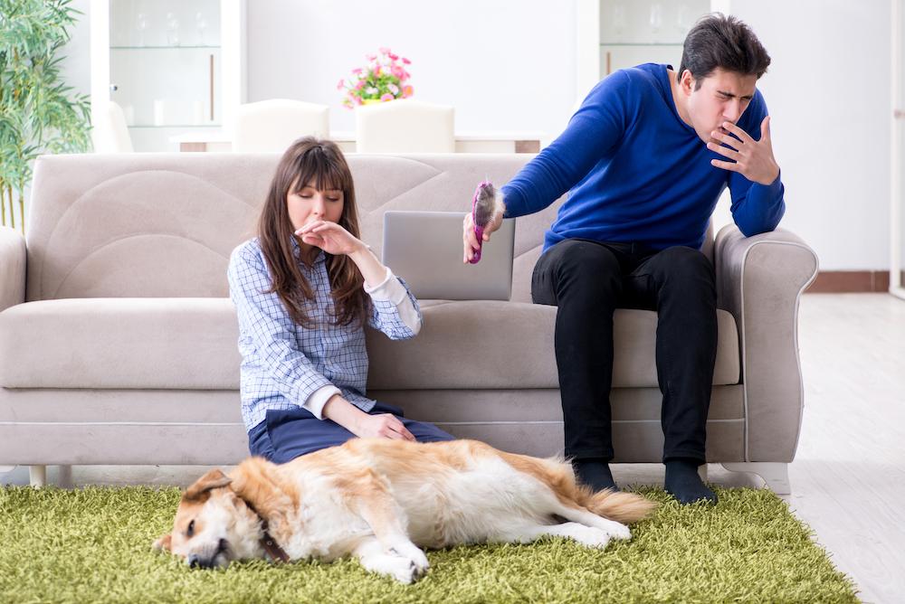 犬アレルギーの症状